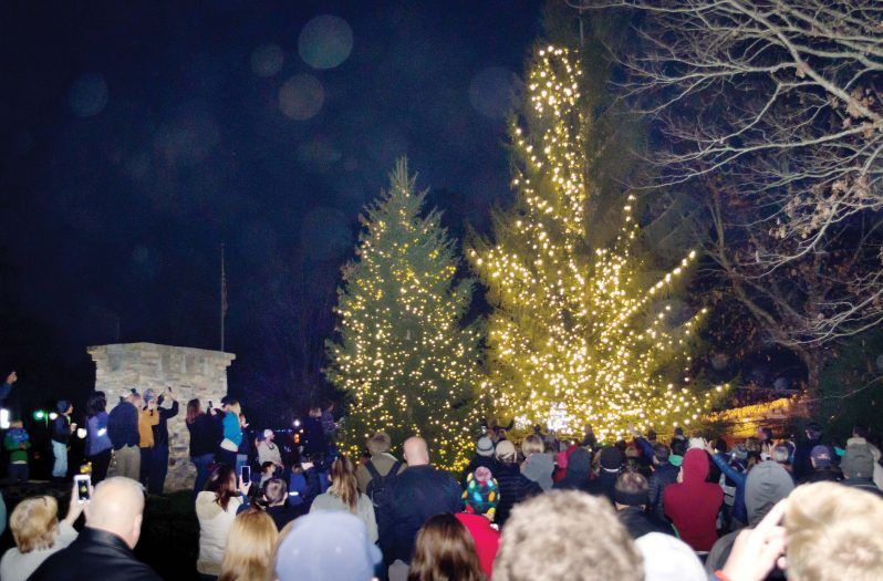 lighting of the tree in jackson county