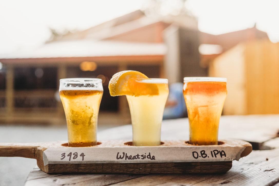 beer flight with orange slice in jackson county