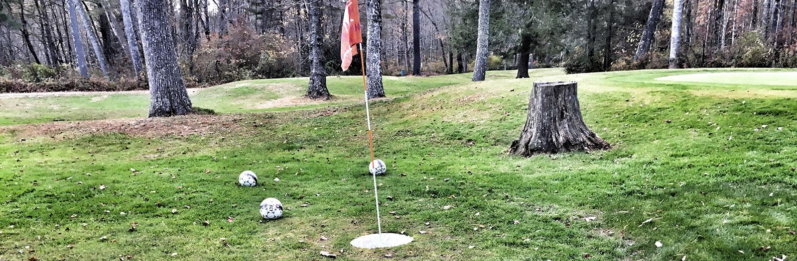 Photo of Red Bird Foot Golf