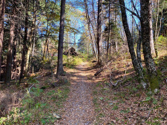 Bearpen Gap Trail along the Blue Ridge Parkway
