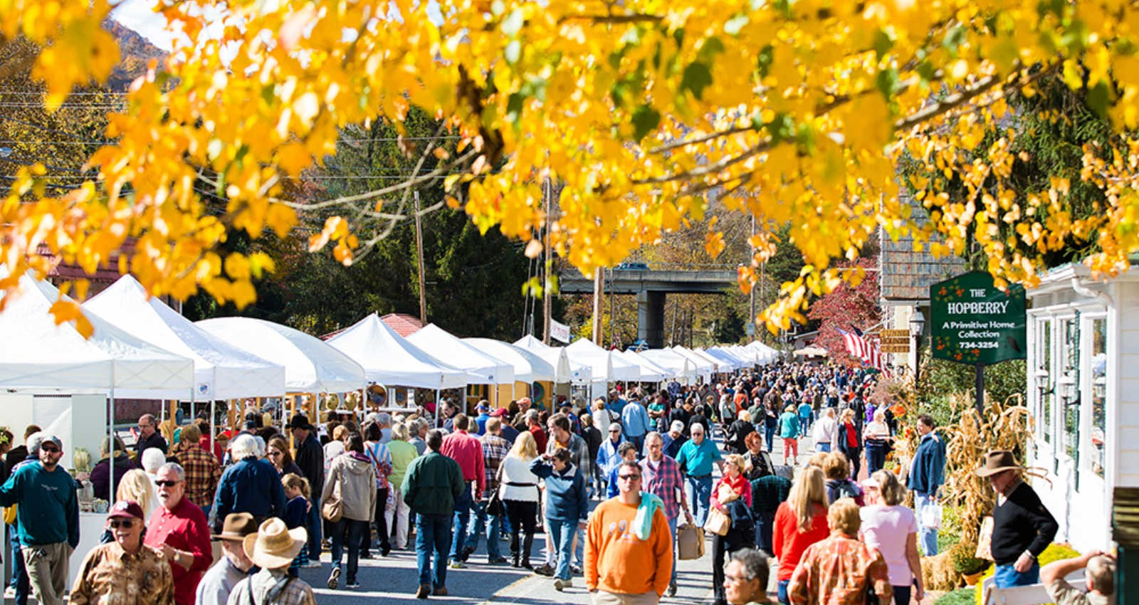 The 13th Annual WNC Pottery Festival