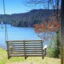 Scenic Photo at Ralph J. Andrews Park
