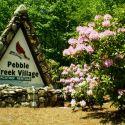 Interior Photo at Pebble Creek Village