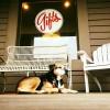 Buck's Coffee Café