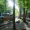Moonshine Creek Campground & Cabins